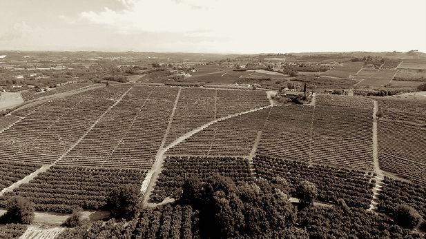 Droni-CdN_NEIVE-Albesani-Santo-Stefano_d