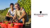 MASSIMO DIOTTI VINEYARDS | Gavi