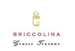 BRICCOLINA_barolo_web_Pagina_1.jpg