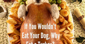 If you can't eat your dog, why would you eat a turkey? Switch to healthy eating!