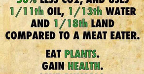 Eat Plants. Gain Health. Save Animals. Help the Planet.