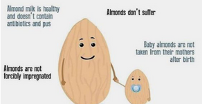 Health Benefits Of Almond Milk: Skin Health, Cancer Prevention & Lactose-Free!