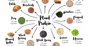 People kept asking where do vegan get proteins, so here's the answer!