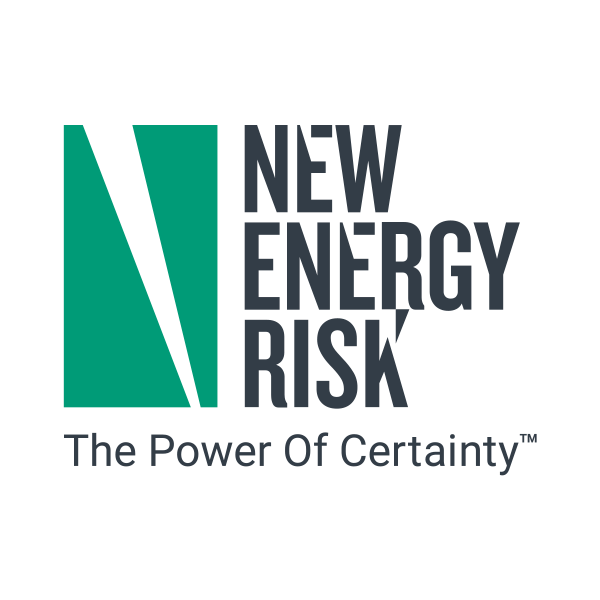 logo-new-energy.png