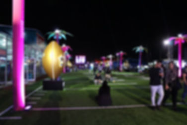 superbowl4.jpg