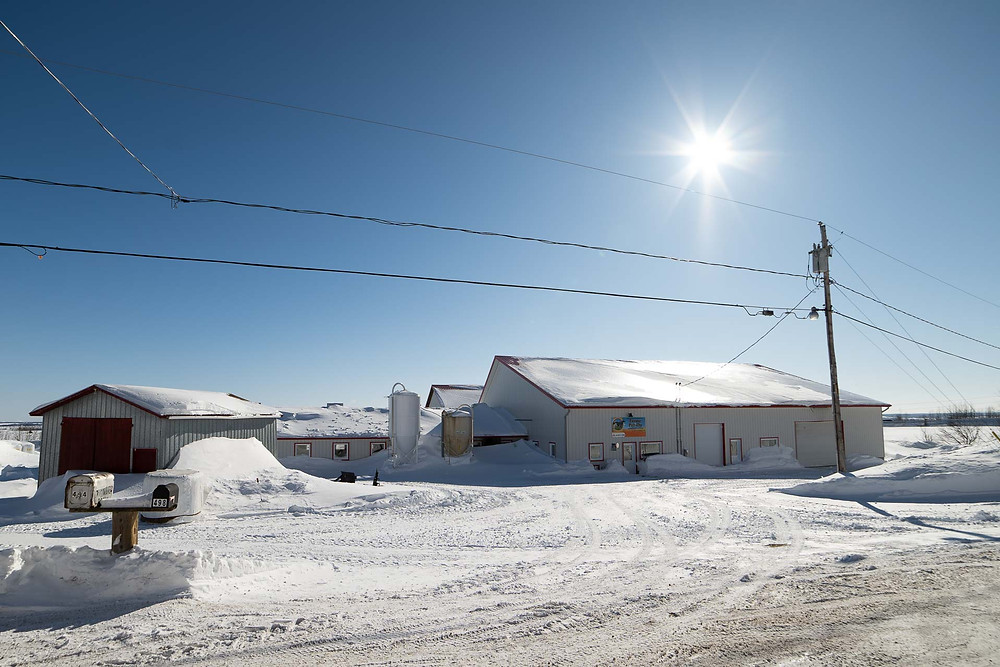 Gestion et conception de projet agricole | MTIC Ingénieur Conseil | Québec