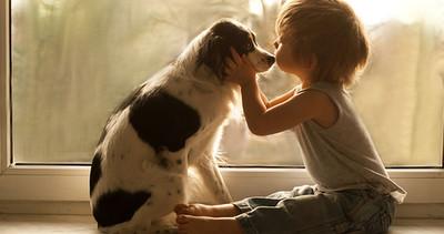 Photo de famille | Une mère capture les moments heureux de l'enfance de son fils avec ses meille