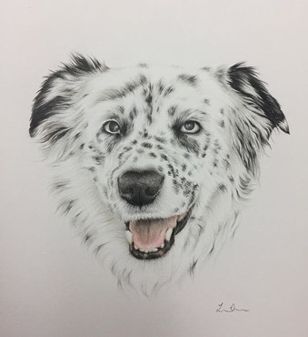 Loved drawing the spots on this lovely p