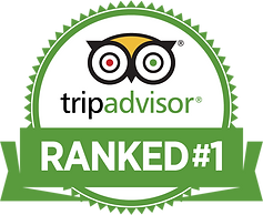 The best tour and outdoor activity in Oklahoma City according to TripAdvisor