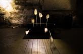 Les plumes ou la frappe de Narcisse - Chapelle de l'Oratoire