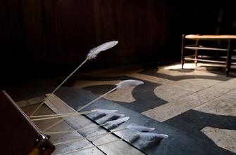Les plumes ou la frappe de Narcisse - DNA - Chapelle du musée dauphinois - Grenoble