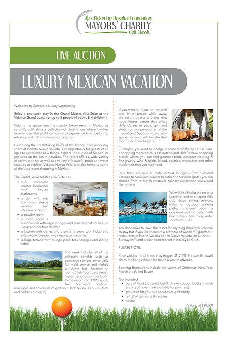 MCC - live auction item - Luxury Mexico