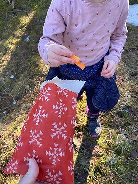 Petite Pochette cirée bee wrap carottes.jpg
