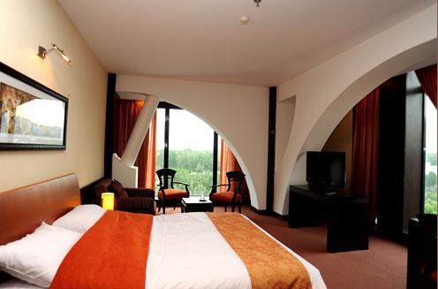 Chamran Shiraz Hotel 2