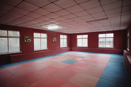 Xing Long Kungfu small training hall