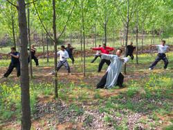 Qigong Practice