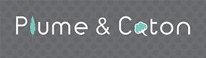 Paulus-logo fond gris png (2).png