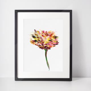 The Flower - Chrysanthemum