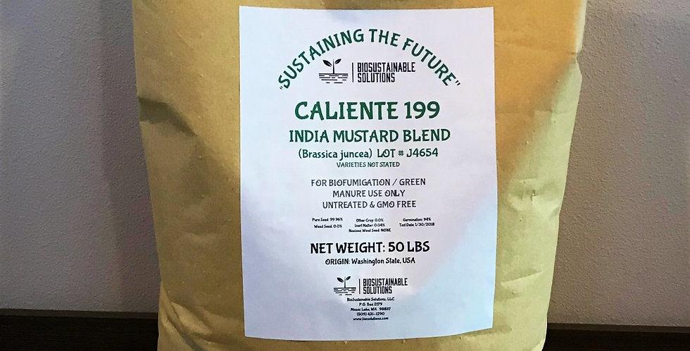 Caliente 199 Mustard Blend   50lb Bag