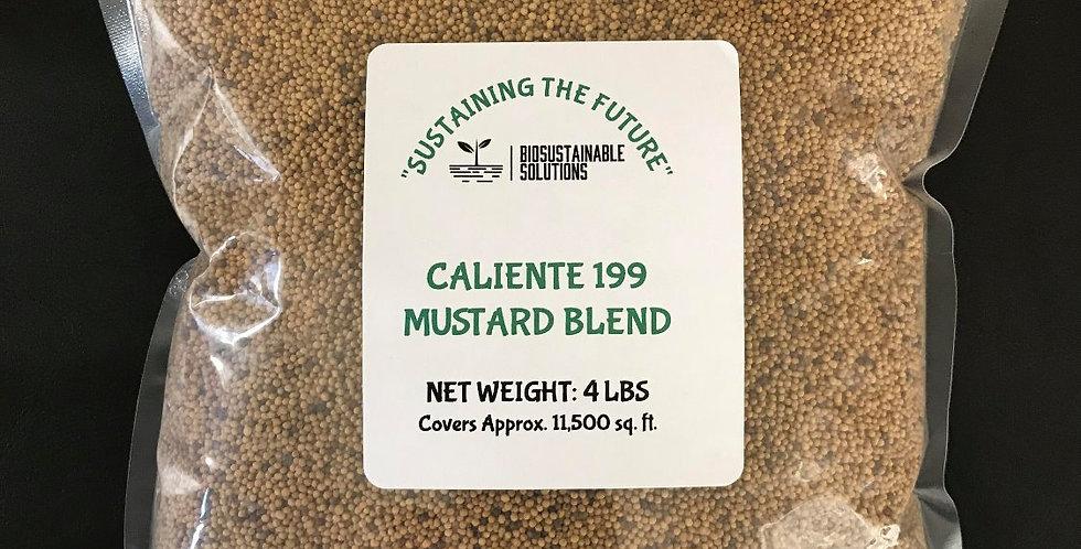Caliente 199 Mustard Blend   4lb