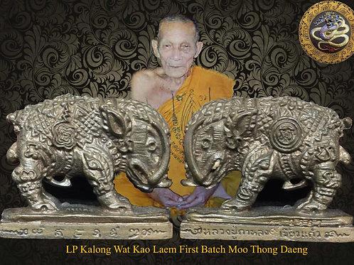 Luang Pu Kalong First Batch Moo Thong Daeng