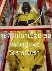 Luang Phor Lui Wat Rachyota(Lineage of Luang Pu Thong) Undecayed Body