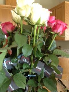 Surprise Roses!
