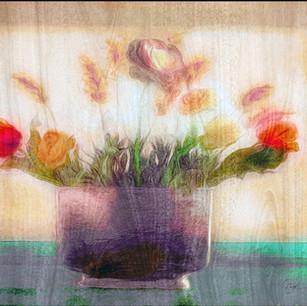 """Beautiful Flowers"" New York City"