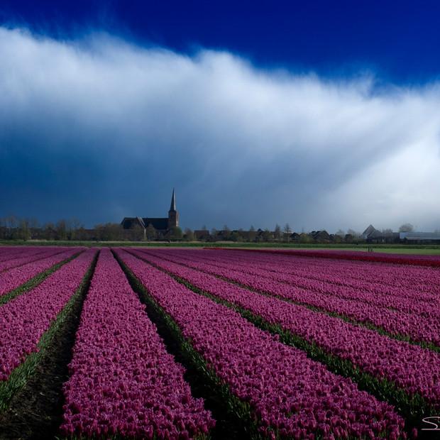 """""""Stormy Skies"""" Hoorn Holland"""