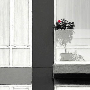 """""""Window with a View"""" NYC"""