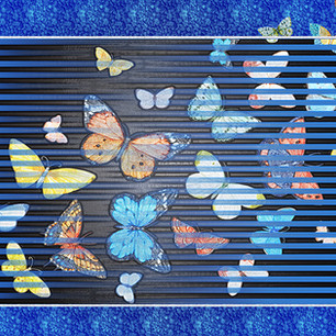 """""""Butterflies are Free""""Montage Rome Italy"""