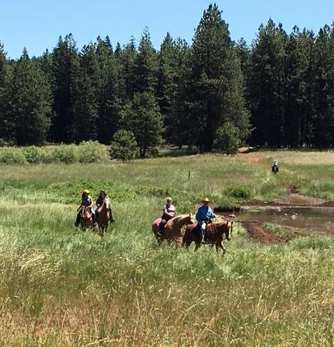 Trail Riders