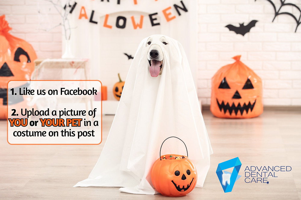 Dog in white ghost costume, Halloween