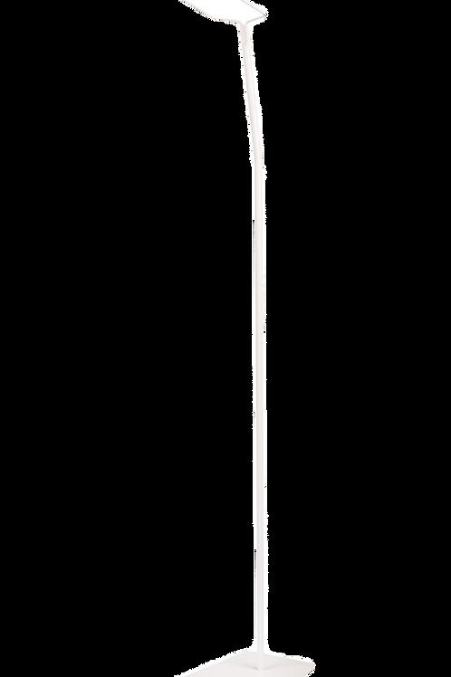 Hemelstang met voet