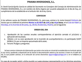 Junta General Ordinaria de Pinama Inversiones, S.L.