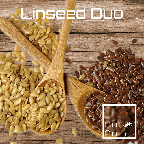 Linseed Duo