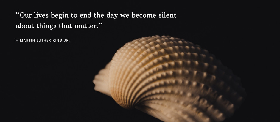 Speaking life into an Impenetrable Quiet Shell: by Catherine Osikoya