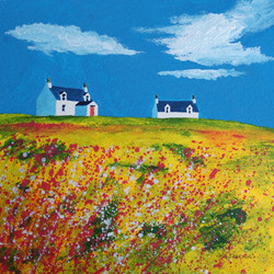 Hebridean wildflowers