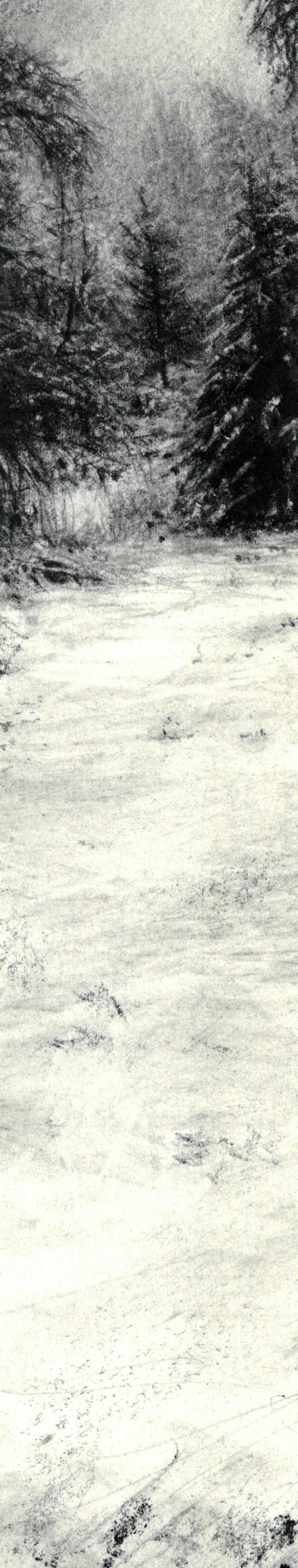 Birnam Trees in the Snow