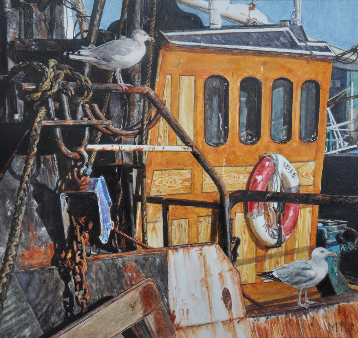 Gulls on a trawler