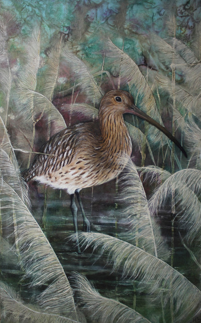 Curlew in Long Grass