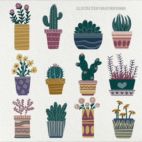 Set Various Pot Houseplants