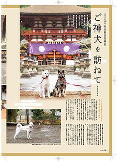 054-056ご神犬(ドラッグされました).jpg
