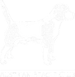 ABCBeagle_Logo_weiss_edited.png