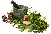 mortar-pestle-herbs.jpg
