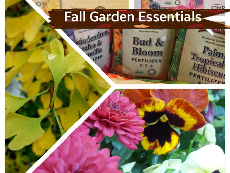 Fall Garden Essentials