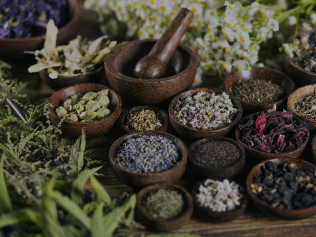 What is an Herbalist?