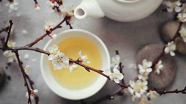 white-tea-in-cup-1296x728.jpg