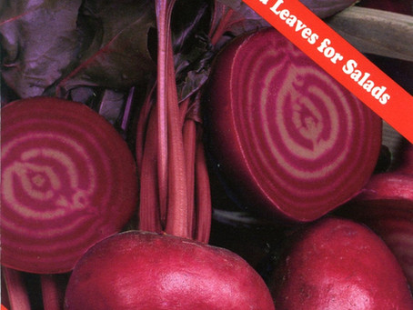 Beneficial Beets
