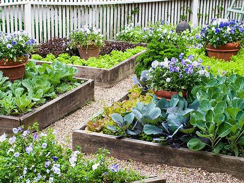 edible-landscape-design-steps.jpe